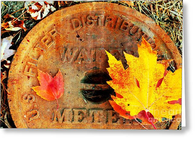 Red Leaves Mixed Media Greeting Cards - Water Meter Cover With Autumn Leaves Abstract Greeting Card by Andee Design