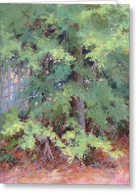 Georgia Pastels Greeting Cards - Water Oak Greeting Card by Marsha Savage