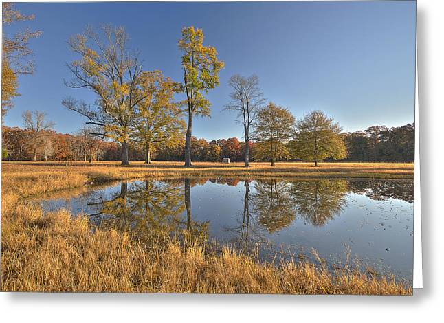 Landing Place Greeting Cards - Water Oaks Pond Greeting Card by Mike Talplacido