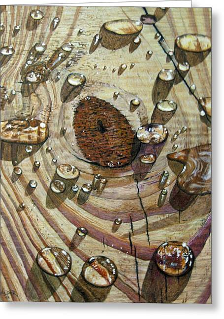 Reflecting Water Drawings Greeting Cards - Water on Wood Greeting Card by Ron Wilder