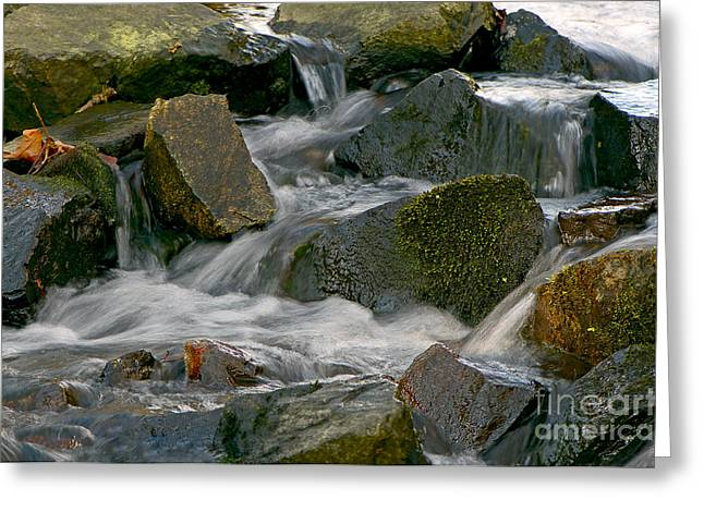 Water Over Rocks Greeting Card by Sharon Talson