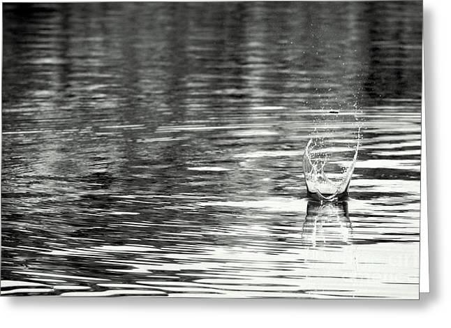 Water Greeting Card by Prajakta P