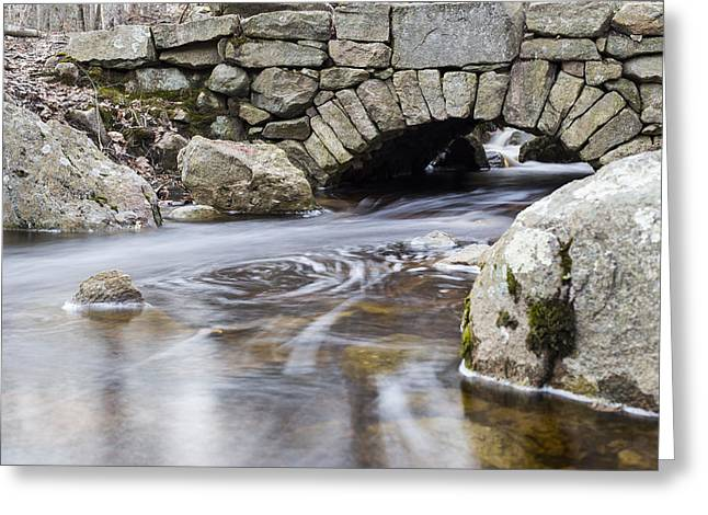 Woodland Scenes Greeting Cards - Water Under The Bridge Greeting Card by Andrew Pacheco