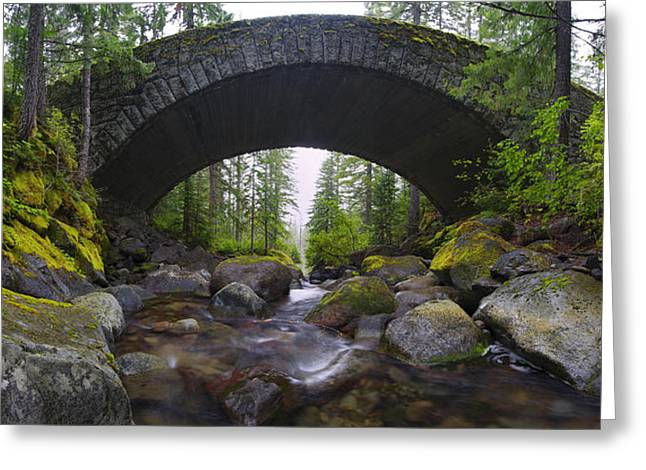 Moss Green Greeting Cards - Water Under the Bridge Greeting Card by Dustin  LeFevre