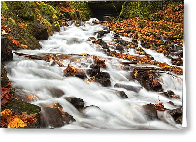 Water under the Bridge Greeting Card by Mike  Dawson
