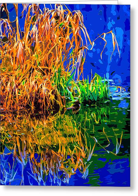 Beautiful Creek Mixed Media Greeting Cards - Water Weeds Greeting Card by Brian Stevens