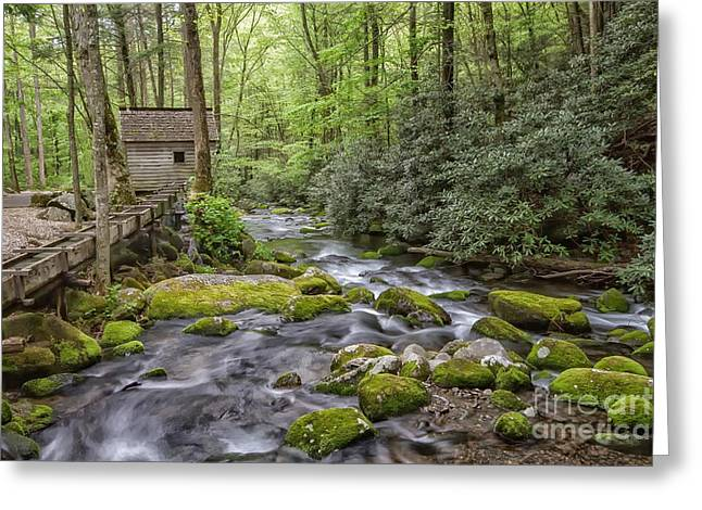 Moss Green Greeting Cards - Water Wheel Greeting Card by Todd Bielby