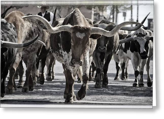White Farm Greeting Cards - Watercolor Longhorns Greeting Card by Joan Carroll