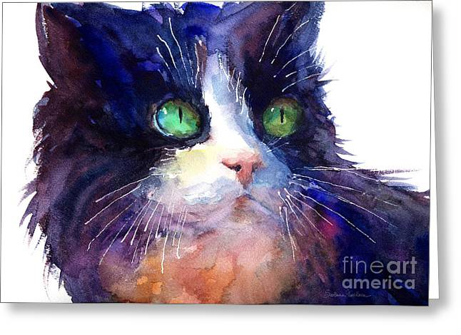 Watercolor Tuxedo Tubby Cat Greeting Card by Svetlana Novikova