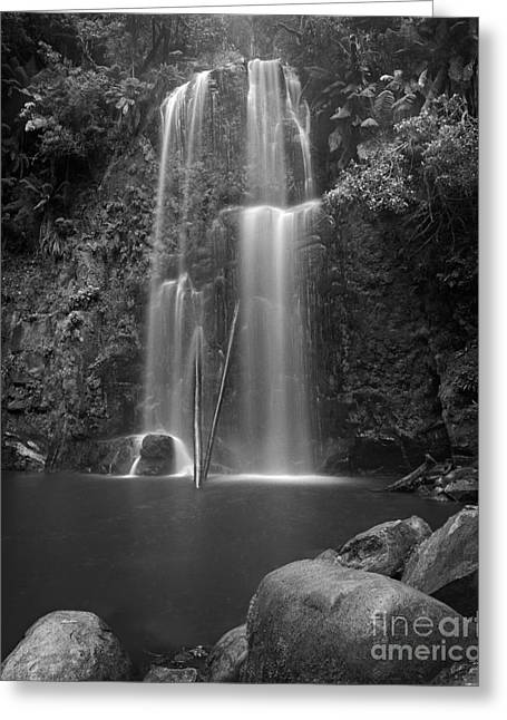 Scenic Waterfall Greeting Cards - Waterfall 07 Greeting Card by Colin and Linda McKie