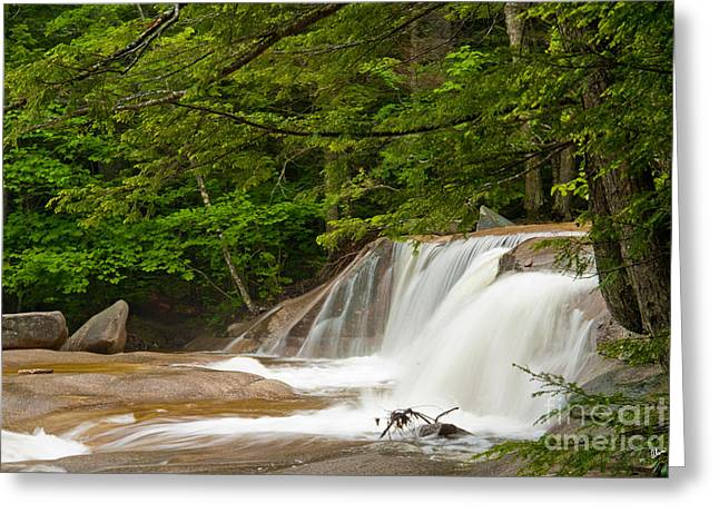 Award Winning Art Greeting Cards - Waterfall Greeting Card by Alana Ranney