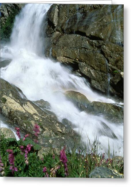 Landscape Photos Greeting Cards - Waterfall Greeting Card by Anonymous
