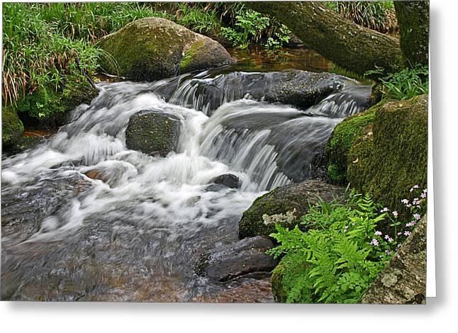 Gills Rock Greeting Cards - Waterfall at Hexworthy Dartmoor Greeting Card by Gill Billington