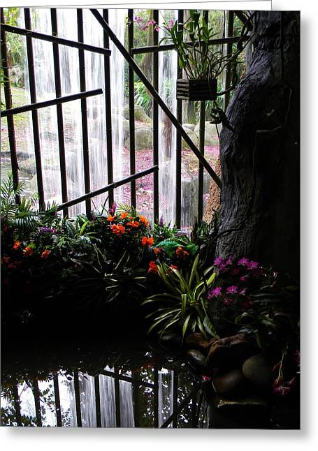 Bamboo Fence Greeting Cards - Waterfall Color Greeting Card by Warren Thompson