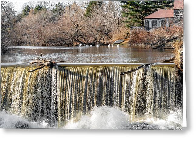 Canoe Waterfall Photographs Greeting Cards - Waterfall Driftwood and The Stroudwater Geese.  Greeting Card by Stroudwater Falls Photography