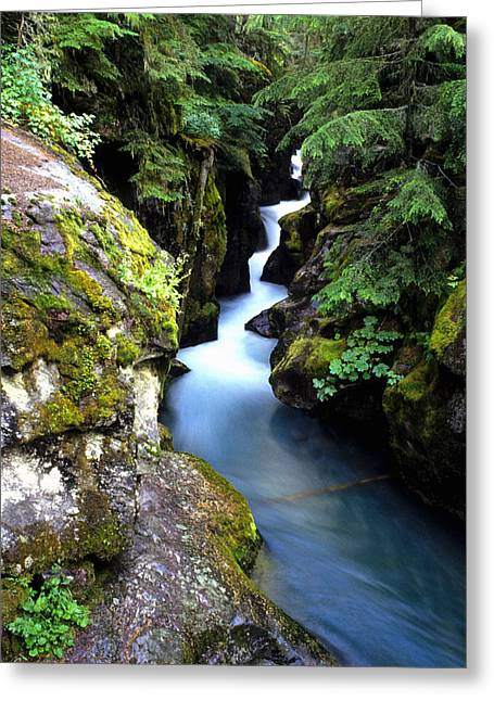 Brightness Greeting Cards - Waterfall, Glacier National Park Greeting Card by Bill Bachmann