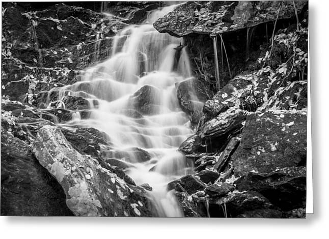 Gatlinburg Tennessee Greeting Cards - Waterfall Great Smoky Mountains Painted BW   Greeting Card by Rich Franco