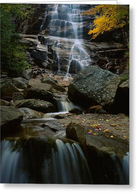 Fall Colors Greeting Cards - Waterfall In A Forest, Arethusa Falls Greeting Card by Panoramic Images
