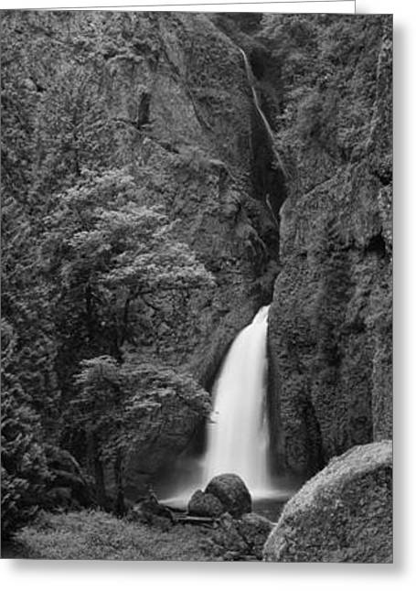 Hood River Oregon Greeting Cards - Waterfall In A Forest, Columbia River Greeting Card by Panoramic Images