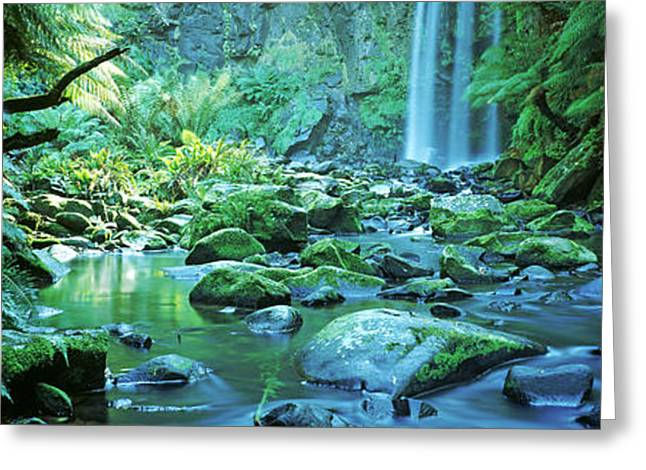 Fall Scenes Greeting Cards - Waterfall In A Forest, Hopetown Falls Greeting Card by Panoramic Images