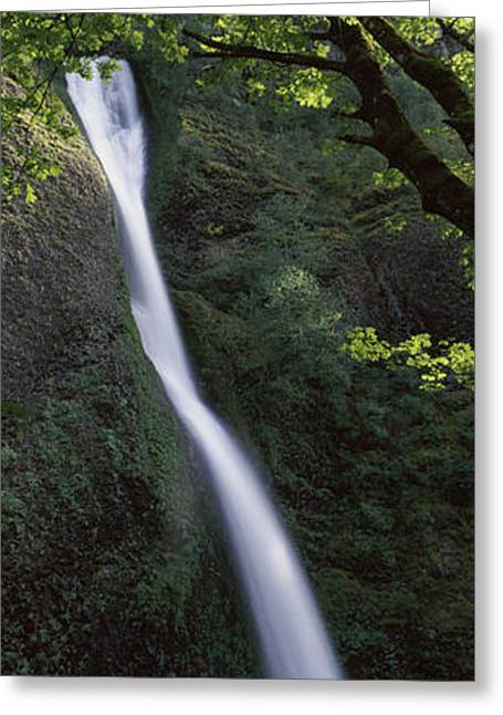 Fall Scenes Greeting Cards - Waterfall In A Forest, Horsetail Falls Greeting Card by Panoramic Images