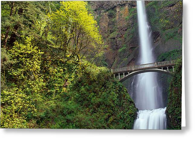 Fall Scenes Greeting Cards - Waterfall In A Forest, Multnomah Falls Greeting Card by Panoramic Images
