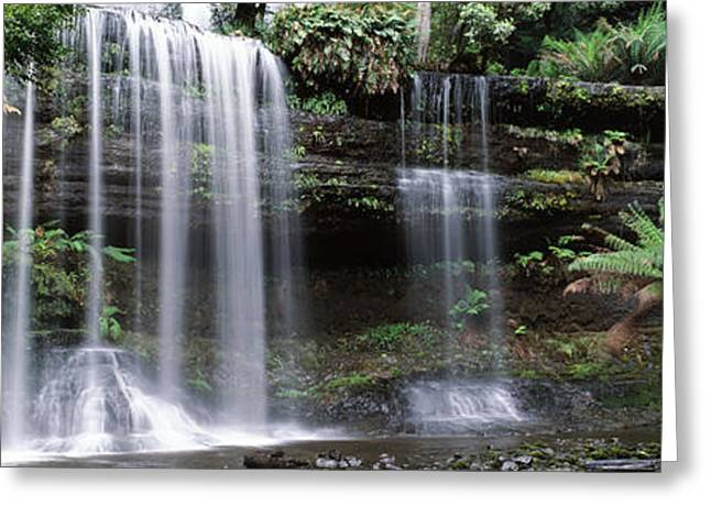 Fall Scenes Greeting Cards - Waterfall In A Forest, Russell Falls Greeting Card by Panoramic Images