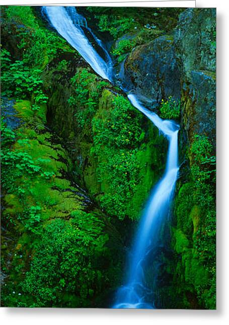 Fall Scenes Greeting Cards - Waterfall In A Forest, Sullivan Falls Greeting Card by Panoramic Images