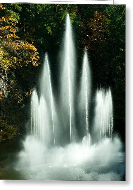 British Columbia Greeting Cards - Waterfall In A Garden, Butchart Greeting Card by Panoramic Images