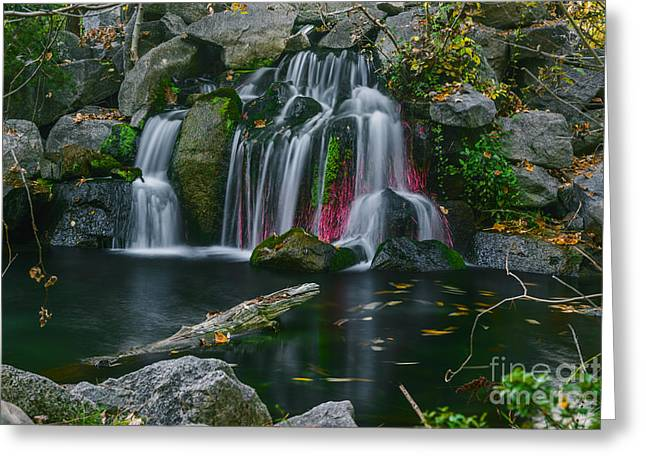 Waterfall In Boise Greeting Card by Vishwanath Bhat