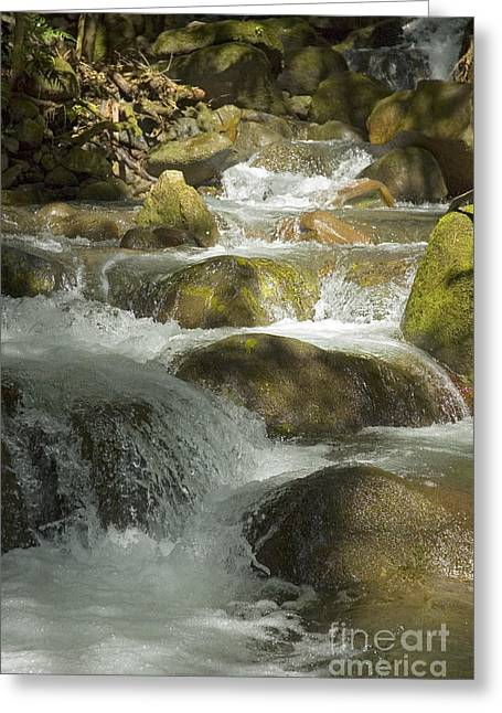 Rincon Greeting Cards - Waterfall in Costa Rica. Greeting Card by Vanessa Devolder