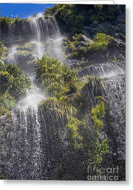 Doubtful Greeting Cards - Waterfall in Doubtful sound Greeting Card by Patricia Hofmeester