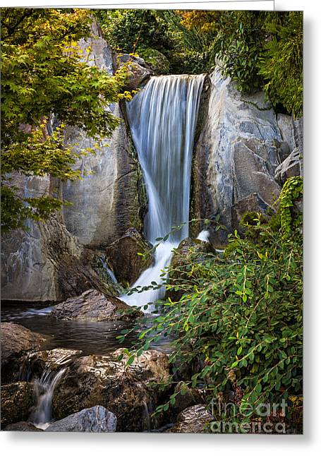 Flowing Greeting Cards - Waterfall in Japanese garden Greeting Card by Elena Elisseeva
