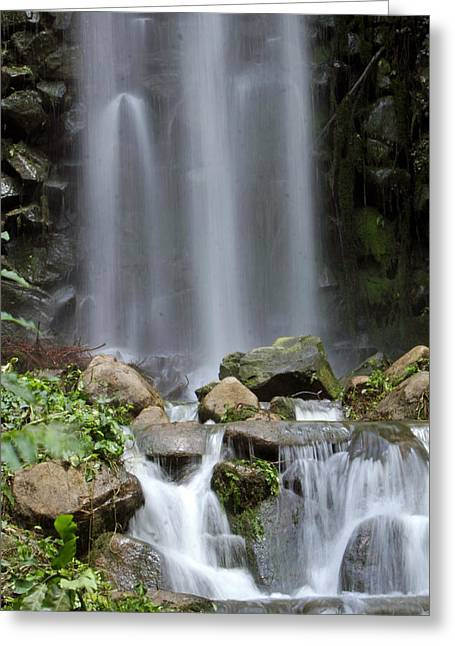 Waterfalls Pyrography Greeting Cards - Waterfall In Singapore Greeting Card by Shoal Hollingsworth