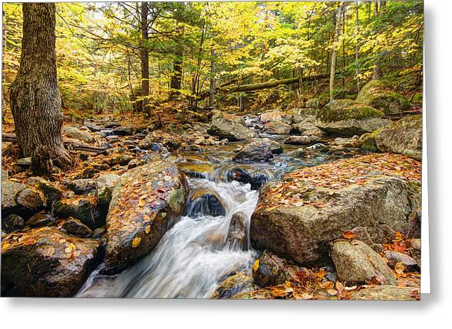 Landscap Greeting Cards - Waterfall In The Fall NH Greeting Card by James Steele