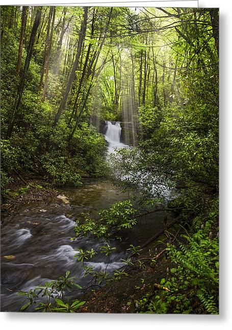 Waterfall In The Forest Greeting Card by Debra and Dave Vanderlaan