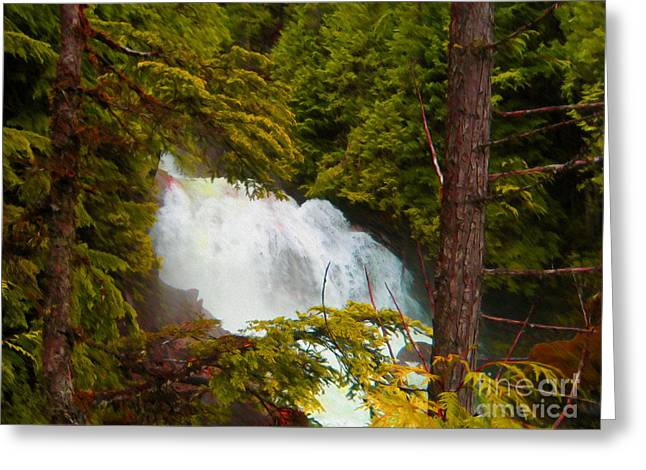 Pine Needles Mixed Media Greeting Cards - Waterfall in the Forest Greeting Card by John Kreiter