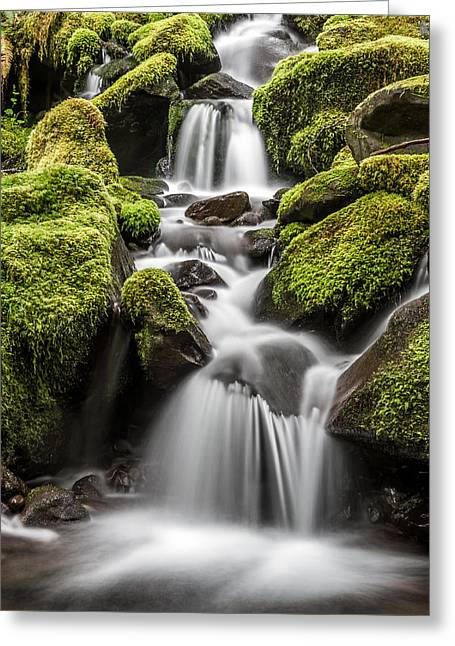 Moss Green Greeting Cards - Waterfall in the rain forest Greeting Card by Pierre Leclerc Photography