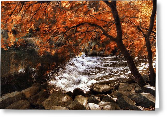 Jessica Photographs Greeting Cards - Woodland Waterfall Greeting Card by Jessica Jenney