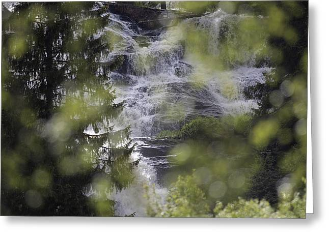 Stream Greeting Cards - Waterfall seen through trees Greeting Card by Intensivelight