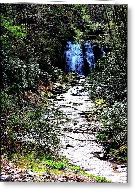 Beautiful Scenery Greeting Cards - Waterfall Greeting Card by Susie Weaver