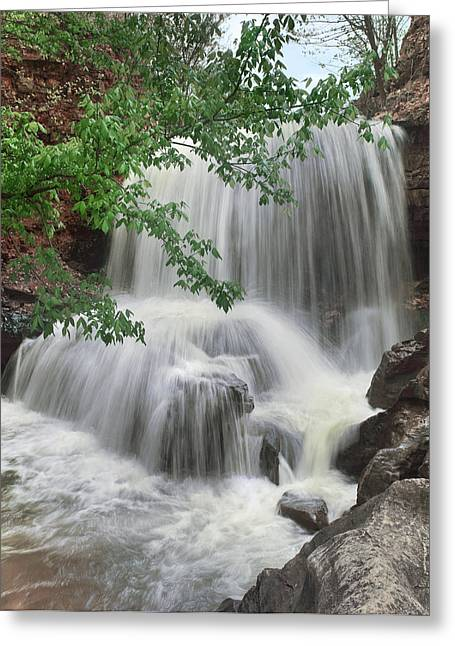 Waterfall Tanyard Creek Bella Vista Greeting Card by Tim Fitzharris