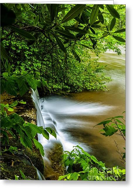 Waterfall Williams River Greeting Card by Thomas R Fletcher