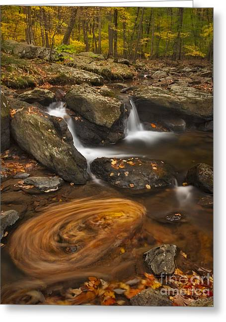 Seasons Greeting Cards - Waterfalls and Swirl Greeting Card by Susan Candelario