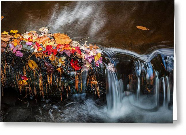 Fallen Leaf Greeting Cards - Waterfalls Childs National Park Painted    Greeting Card by Rich Franco