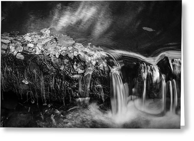 Black Rock Yellow Leaves Water Greeting Cards - Waterfalls Childs National Park Painted BW   Greeting Card by Rich Franco