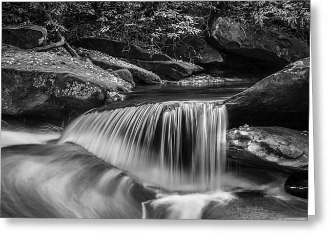 Black Rock Yellow Leaves Water Greeting Cards - Waterfalls Great Smoky Mountains BW  Greeting Card by Rich Franco