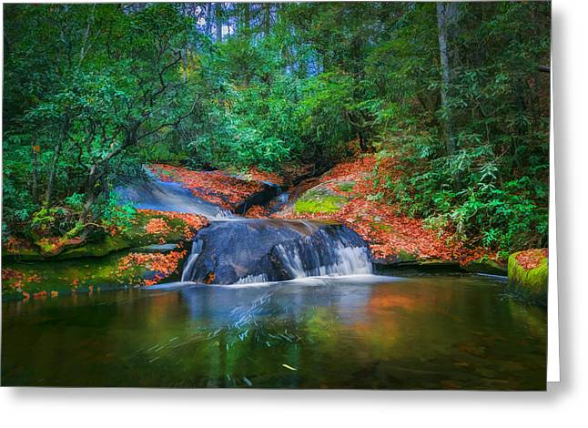 Black Rock Yellow Leaves Water Greeting Cards - Waterfalls Great Smoky Mountains Painted  Greeting Card by Rich Franco