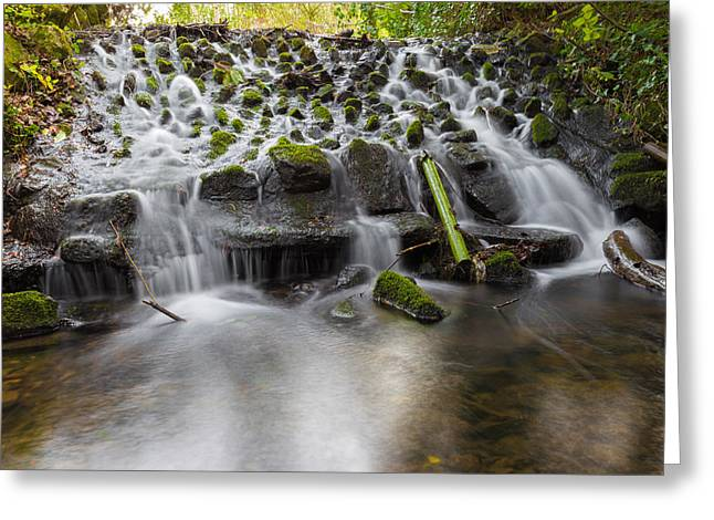 Pouring Greeting Cards - Waterfalls in Marlay Park Greeting Card by Semmick Photo