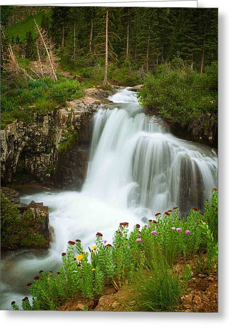 Twins Pyrography Greeting Cards - Waterfalls In The San Juans Greeting Card by R Steven Diaz